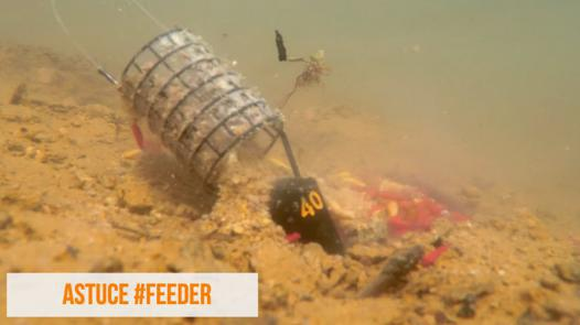 peche feeder