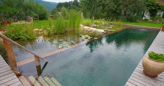 piscine naturel