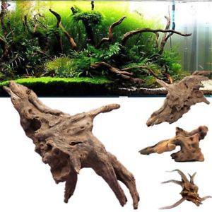 bois aquarium