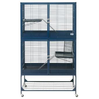 cage savic
