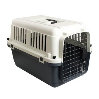 cage transport animaux
