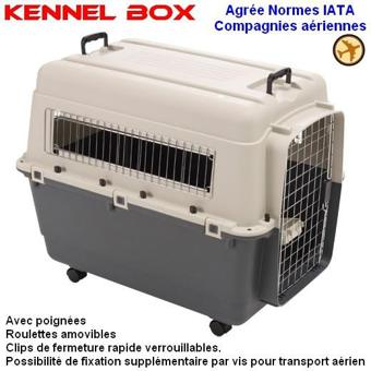 cage transport chien avion