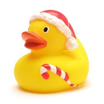 canard bain