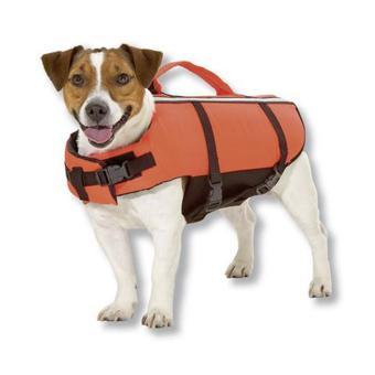 gilet sauvetage chien