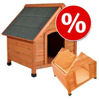 isolation niche chien