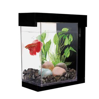 kit aquarium
