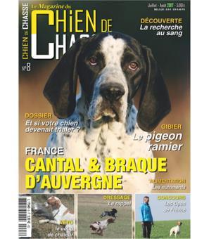 magazine chien