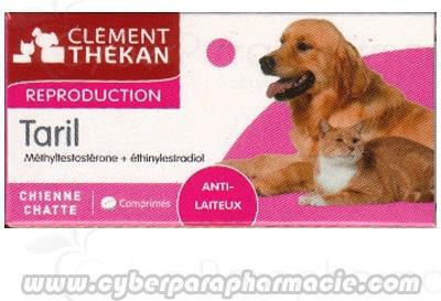 pilule chienne