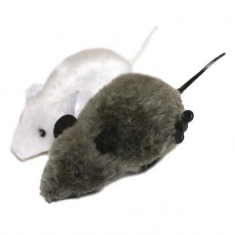 souris pour chat